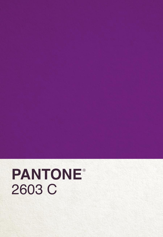 PAN2603C_front